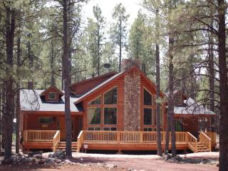 Stunning Bearly-A-Cabin Luxury Cabin near Grand Canyon / Flagstaff / Williams - Grand Canyon National Park vacation rentals