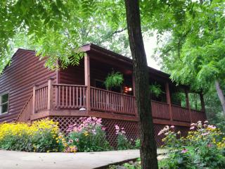 Romantic Mountain Cabin - All Inclusive Rates!!! - Clyde vacation rentals