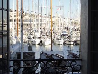 Luxury 2 bed apartment with  views of Cannes - Valescure vacation rentals
