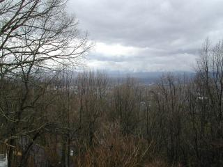 INTOWN 4 /4 Cabin-Great Views-1.3 mi to downtown - Asheville vacation rentals