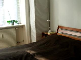 Lovely Copenhagen apartment close to Valby Station - Copenhagen vacation rentals