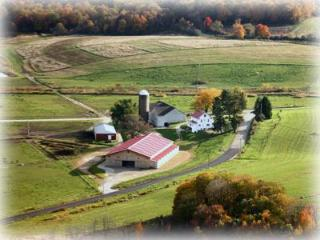 Horizon View Farms in Beautiful Laurel Highlands - Addison vacation rentals