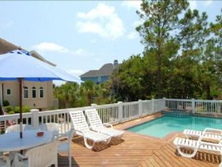 2nd Row Ocean House, Ocean Views, 5 Minute Walk to Coligny Plaza - Hilton Head vacation rentals