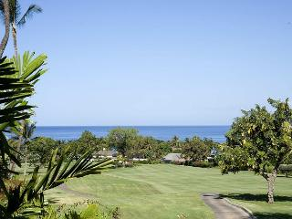 Perfect Condo with Internet Access and A/C - Maui vacation rentals