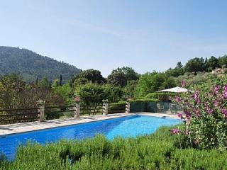 200 year-old Provencal dream house - Bargemon vacation rentals