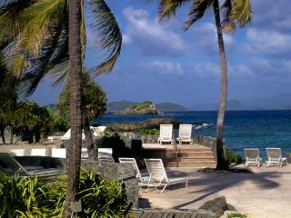 Condo on Beach Caribbean/Pool 40'Out Rear - East End vacation rentals