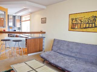 Short rent in Kaunas Zaliakalnis - Kaunas vacation rentals