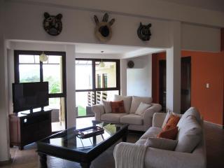 Gorgeous Mountain Villa – 50 mn from Panama City - Capira vacation rentals