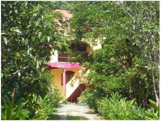 Nice 1 bedroom Condo in Bocas del Toro with Internet Access - Bocas del Toro vacation rentals