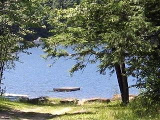 Quiet Comfortable Cabin 5 Min. Walk to Lake - Berkshires vacation rentals