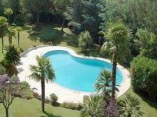 The delightful and inviting swimming pool - Ground floor one bedroom apartment & shared pool - Cannes - rentals