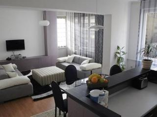Comfortable 1 bedroom Sarajevo Apartment with Internet Access - Sarajevo vacation rentals