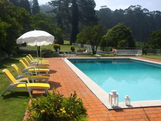 Casa D'Quinta: pool, tennis court, gardens - Northern Portugal vacation rentals