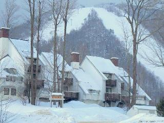 Luxury Trail side Condo - Ski In Ski Out & unmatched all season family amenities - Killington vacation rentals