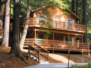 Yosemite International Chalet - Great Location! - Yosemite National Park vacation rentals