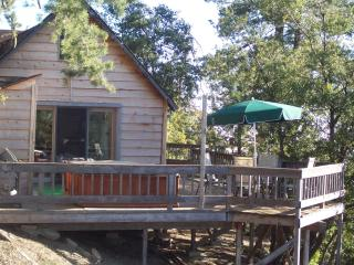 Pet friendly cabin with privacy and great views - Idyllwild vacation rentals