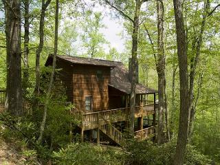 New River Cabin - Hot Tub - Wi-Fi - Fishing - Pool Table and More. - West Jefferson vacation rentals