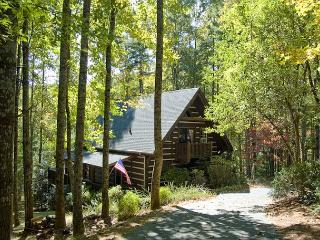 Rustic Log Cabin on the Lake - River Access - Fleetwood Falls - Wi-Fi Added! - Fleetwood vacation rentals