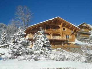 Beautiful alpine chalet in the Grand Bornand - Le Grand-Bornand vacation rentals