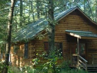 Peaceful Log Cabin 8 ft from Creek Open Year Round - Burnsville vacation rentals