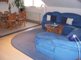 LLAG Luxury Vacation Apartment in Niedenstein - 861 sqft, blue, comfortable, cozy (# 3101) - Niedenstein vacation rentals