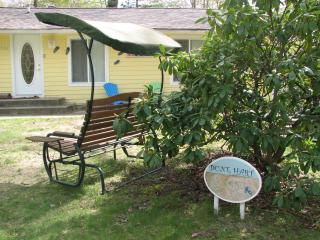 Delightful Cottage in Lake Michigan Dunes! So Fun! - South Haven vacation rentals