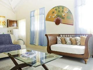 Cupid's Home Free Car with your stay,AC bedrooms - Saint Philip vacation rentals
