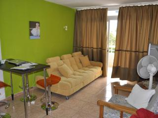 Modern 1 bedroom apartment - Playa Del Ingles, GC - Playa del Ingles vacation rentals