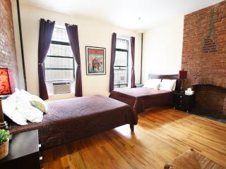 Lovely 1 bedroom Apartment in New York City - New York City vacation rentals