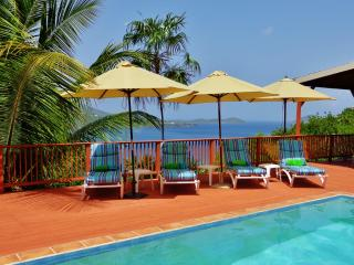 Magen's Bay, Pool, Amazing View, Privacy, Exquisite Comfort & Service, Gated - Magens Bay vacation rentals