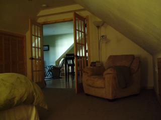 One bedroom luxury suite with private spa unit. - Juneau vacation rentals