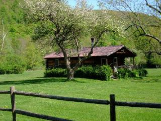 Cold Spring Lodge - 2 BR Catskill Mountain Cabin - Catskills vacation rentals