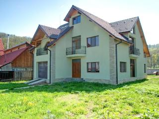5 bedroom House with Internet Access in Rasnov - Rasnov vacation rentals