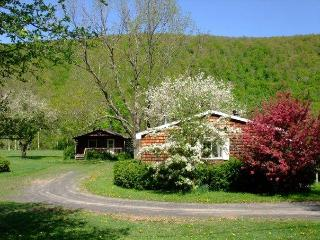 Cold Spring Lodge - Three Bedroom Catskills Cabin - Shandaken vacation rentals