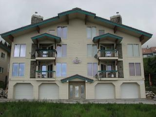 Schweitzer Ski-in/out condo 3bed/3bath sleeps 8 - Priest Lake vacation rentals