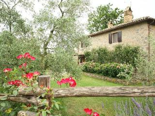 Relax and history in our charming villa in Umbria - Orvieto vacation rentals