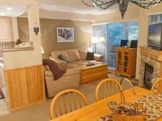 Lagoons 3 a pet-friendly 2 bdrm & private hot tub - British Columbia Mountains vacation rentals