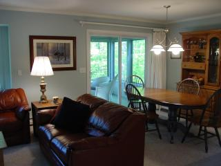 3+ BR  House w shared pool 5 mins from Storyland - Bartlett vacation rentals