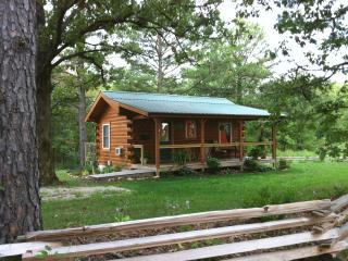 Jack's Log Cabin with Hot Tub near Meramec River - Steelville vacation rentals