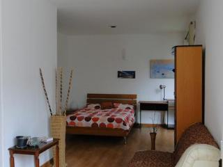 Lovely Studio In San Angel, southern Mexico City - Playa del Carmen vacation rentals
