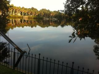 Waterfront 3/3 Home/Dock, direct to Gulf of Mexico - New Port Richey vacation rentals