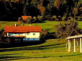 Comfortable House with Internet Access and Dishwasher - Begunje na Gorenjskem vacation rentals