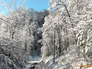 God's Gift 2 bed/2 bath cabin view of Mt LeConte - Gatlinburg vacation rentals