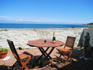 SMUGC - Ilfracombe vacation rentals