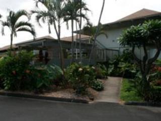 Kihei Bay Surf Entrance - Affordable Maui Condo Rental Free Wi-Fi & Parking - Kihei - rentals