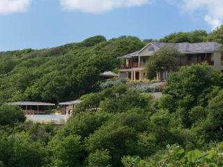 4 en-suite bedrooms expertly decorated, a beautiful 40' infinity pool overlooking a pristine beach, 7 mins from the pretty harbo - Saint Vincent and the Grenadines vacation rentals