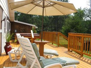 "Castle Rock Lake   ""Sunny Lane House"" - New Lisbon vacation rentals"