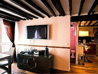 4 Bedroom Paris Apartment with Eiffel Tower Views - Paris vacation rentals