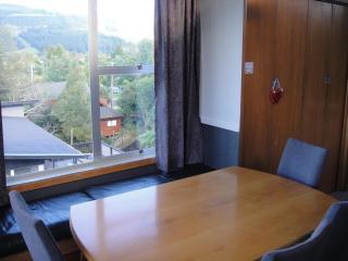Lovely 4 bedroom House in Rotorua with Blender - Rotorua vacation rentals