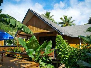 Villa Rarotonga - 2 bedroom holiday home - Arorangi vacation rentals